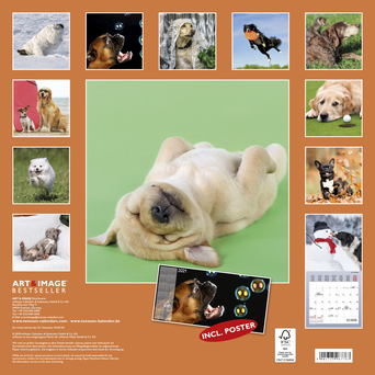 Vente Papeterie : Calendrier Chiens fun 2020