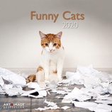 Vente Papeterie : Calendrier Funny Cats 2020