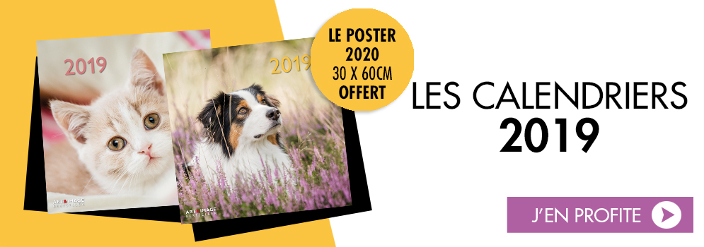 offre calendrier